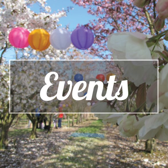 Brogdale Collections Events